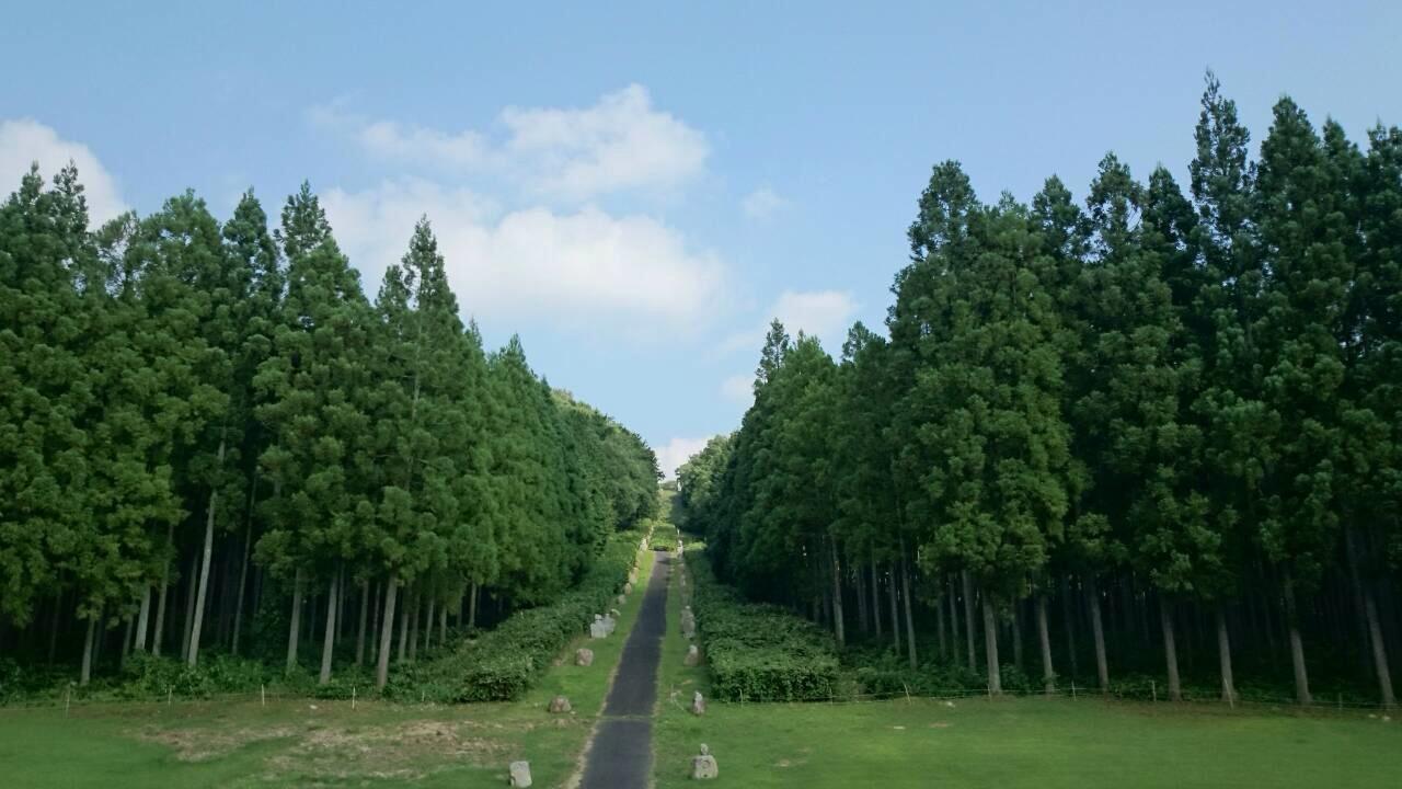 憩いの森1.jpg