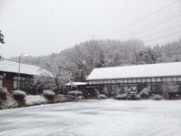 雪の大子町❄