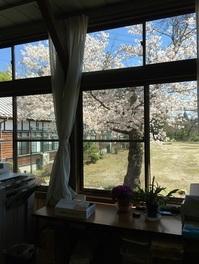 桜とルネサンス高等学校