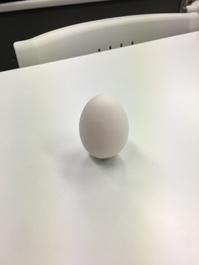 「卵の立つ日」と卵のゆで方