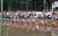 夏至の田植祭