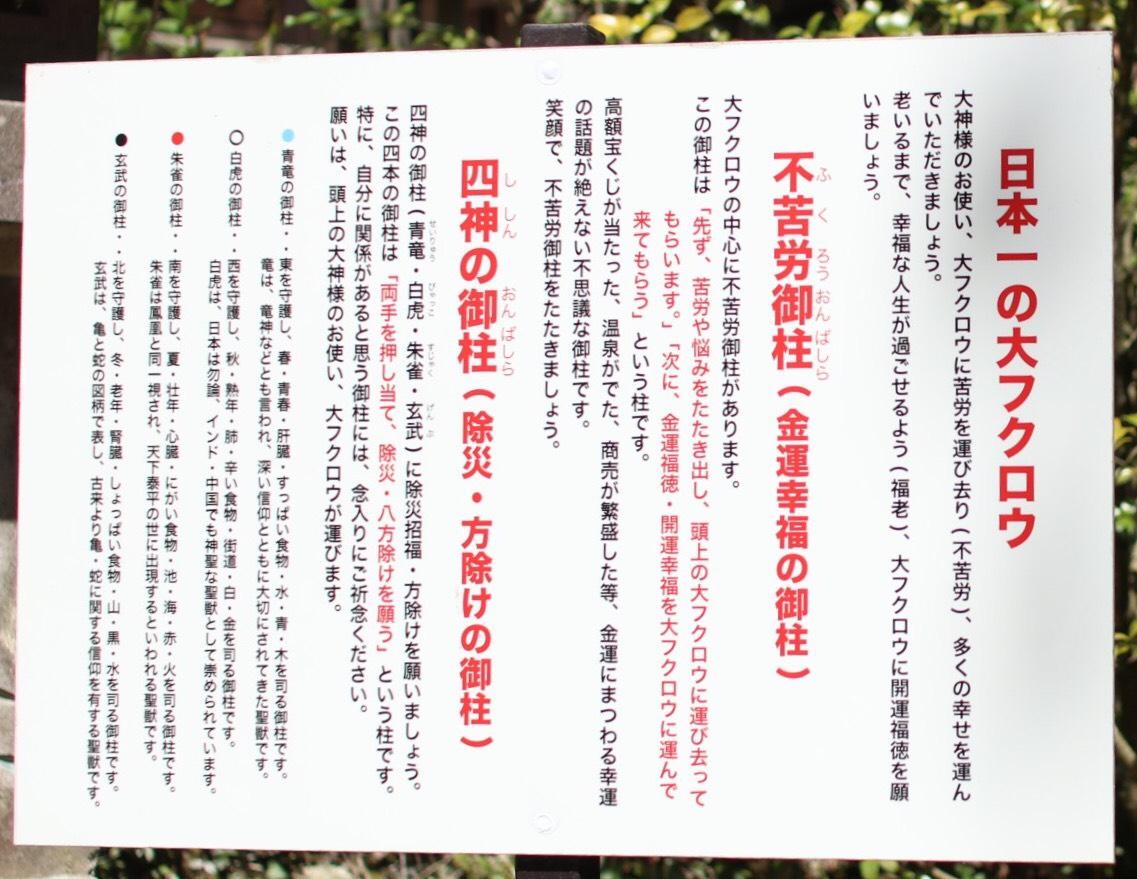 S__24879114.jpg