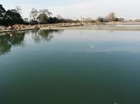 生きた教材となる緩速ろ過池
