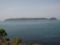 海藻を「食べる」野外イベント参加