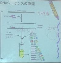 府立園芸高校でDNAシークエンサを操作体験
