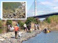 淡水魚のメッカ・大阪の地_淀川で環境保全しよう