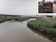 府県境を流れる猪名川・支流で水質調査