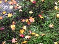 「里の秋」