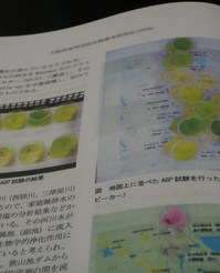 藻類クロレラと培養液をゲット!