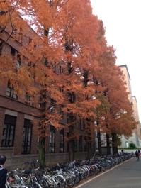 京都大学訪問