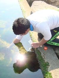大潮の昼下がり_海藻に着生する光合成微生物を求めて