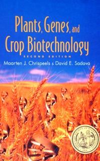 バッタのため雑穀・雑草を栽培