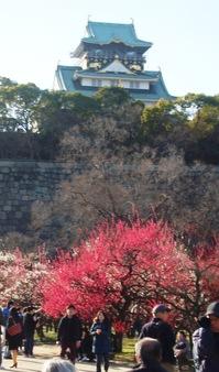 大阪城公園で「写真甲子園」へ向けて発進!