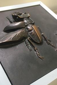 卒業生たちが訪れた箕面公園、「昆虫館」