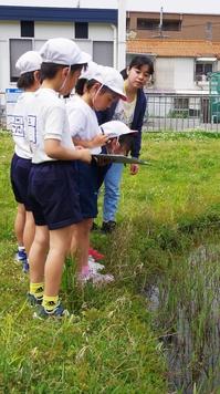 高校生が「子ども自然教室」サポート体験