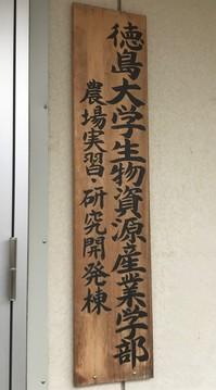 虫好き生徒を徳島大「コオロギ農場」へ誘う