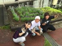 花のある学校!