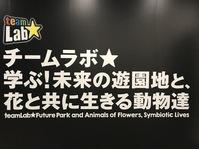 名古屋市科学館チームラボに行ってきました!